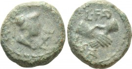 LUCANIA. Paestum (Poseidonia). Ae Semis (Circa 90-44 BC). 