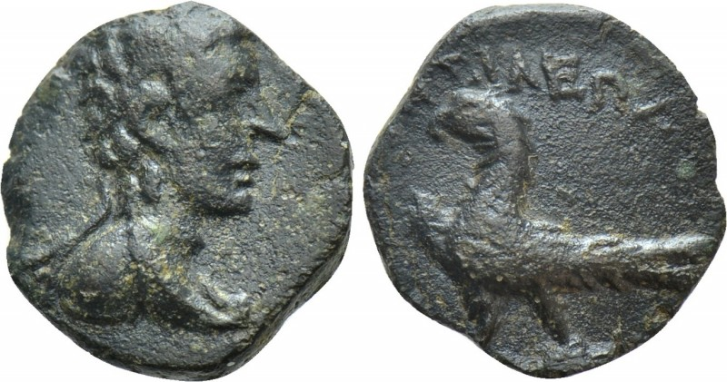 KINGS OF THRACE (Odrysian [Astaian]). Kotys IV (57-50/48 BC). Ae. Odessos or Biz...