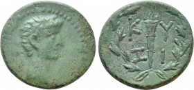 MYSIA. Cyzicus. Augustus (27 BC-14 AD). Ae. 