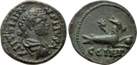 MYSIA. Parium. Caracalla (198-217). Ae. 
