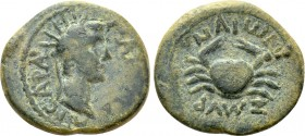 IONIA. Smyrna. Caligula (37-41). Ae. 