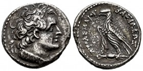 Egypt. Ptolemy VI. Tetradrachm. 180-145 BC. Alexandria. (Sng Cop-262). Rev.: BAΣIΛEΩΣ ΠTOΛEMAIOY, eagle standing to left on thunderbolt. Ag. 12,38 g. ...
