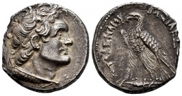 Ptolemaic Kings of Egypt. Ptolemy VI. Tetradrachm. 180-170 BC. Alexandria. (Sng Cop-262-8). (Svoronos-1489). Anv.: Diademed head of Ptolemy I right, w...