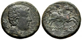 Ausesken. Unit. 120-20 BC. Vic (Barcelona). (Abh-170). (Acip-1304). Anv.: Head to right, behind wild boar. Rev.:  Rider with palm to the right, below ...