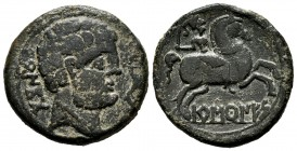 Baskunes. Unit. 120-20 BC. Pamplona. (Abh-220). Anv.: Bearded head to right, in front of dolphin up, behind Iberian legend BeNCoDa. Rev.: Horseman wit...