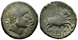 Bilbilis. Unit. 120-30 BC. Calatayud (Zaragoza). (Abh-258). (Acip-1573). Anv.: Male head to right, in front of dolphin, behind BI. Rev.: Horseman with...