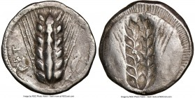 LUCANIA. Metapontum. Ca. 510-470 BC. AR stater (22mm, 12h). NGC Choice VF. MET, barley ear of seven grains; lizard to right / Incuse of barley ear. No...