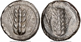 LUCANIA. Metapontum. Ca. 470-440 BC. AR stater (20mm, 7.29 gm, 12h). NGC Choice XF 5/5 - 2/5. META (retrograde), five-grained barley ear; dotted borde...