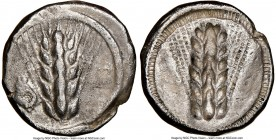 LUCANIA. Metapontum. Ca. 470-440 BC. AR stater (19mm, 6h). NGC VF MET, barley ear with seven grains; rams head on left; guilloche border on raised rim...