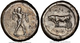 LUCANIA. Poseidonia. Ca. 470-420 BC. AR stater (19mm, 7.79 gm, 5h). NGC Choice VF 5/5 - 2/5, brushed, edge marks. ΠΟΣEΣ, Poseidon striding right, nude...