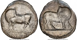 LUCANIA. Sybaris. Ca. 550-510 BC. AR stater (29mm, 6.84 gm, 12h). NGC Choice VF 5/5 - 2/5, graffito, brushed. Bull standing left, head reverted, on do...