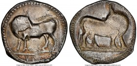 LUCANIA. Sybaris. Ca. 550-510 BC. AR stater (30mm, 7.31 gm, 12h). NGC XF 5/5 - 2/5, brushed. Bull standing left, head reverted, on dotted ground line;...