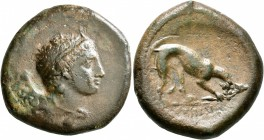 SICILY. Agyrion. Circa 339/8-317 BC. Hemilitron (Bronze, 28 mm, 15.00 g, 4 h). Head of young Herakles (or Iolaos?) to right, wearing tainia, lion skin...