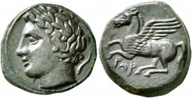 SICILY. Panormos (as Ziz). Circa 336-330 BC. Hemilitron (Bronze, 15 mm, 2.71 g, 3 h). Laureate head of Apollo to left; to right, dolphin downwards. Re...
