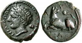 SICILY. Syracuse. Agathokles, 317-289 BC. AE (Bronze, 12 mm, 1.83 g, 5 h), circa 317-310. ΣYPAKOΣIΩN Laureate head of Apollo to left; behind, astragal...