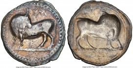LUCANIA. Sybaris. Ca. 550-510 BC. AR stater or nomos (29mm, 7.41 gm, 12h). NGC (photo-certificate) VF 5/5 - 2/5. Bull standing left, head right, on be...
