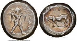LUCANIA. Poseidonia. Ca. 470-420 BC. AR stater (15mm, 7.35 gm, 4h). NGC Choice VF 5/5 - 3/5. ΠΟΣE. Poseidon striding right, nude, brandishing trident ...