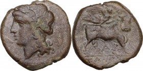 Greek Italy. Samnium, Southern Latium and Northern Campania, Cales. AE 20.5 mm, circa 265-240 BC. Obv. Laureate head of Apollo left; shield behind. Re...