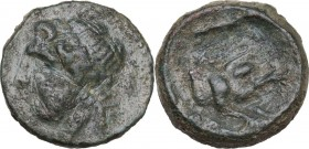 Greek Italy. Northern Apulia, Arpi. AE15, circa 325-275 BC. Obv. Laureate head of Zeus left; thunderbolt behind. Rev. Forepart of boar right, spear ab...