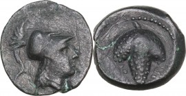 Greek Italy. Northern Apulia, Arpi. AE15. 215-212 BC. Obv. Head of Athena right with helmet. Rev. Bunch of grapes. HN Italy 650. AE. 2.86 g. 15.00 mm....
