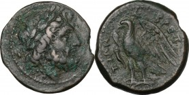 Greek Italy. Bruttium, The Brettii. AE Unit, 214-211 BC. Obv. Head of Zeus right, laureate. Rev. Eagle standing left on thunderbolt, wings open; befor...