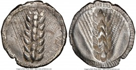 LUCANIA. Metapontum. Ca. 510-470 BC. AR stater (25mm, 7.46 gm, 12h). NGC XF 5/5 - 2/5. META, seven-grained barley ear; guilloche border on raised rim ...