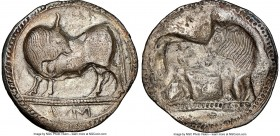 LUCANIA. Sybaris. Ca. 550-510 BC. AR stater (29mm, 7.17 gm, 1h). NGC (photo-certificate) XF 5/5 - 2/5, brushed. Bull standing left, head reverted, on ...