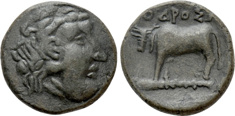 THRACE. In the name of the Odrysians(?). Ae (Circa 340 BC) 