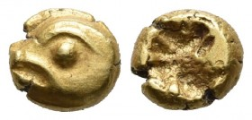 Ionia, uncertain mint (Phokaia?), EL 1/24 stater, ca. 625-550 BC Head of seal (?) left Irregular incuse punch Rosen 334.  6.2mm / 0.7g