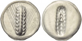 Lucania, Metapontion, Stater, c. 540-510 BC