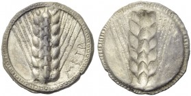 Lucania, Metapontion, Stater, c. 510-470 BC