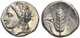 Lucania, Metapontion, Stater, c. 330-290 BC