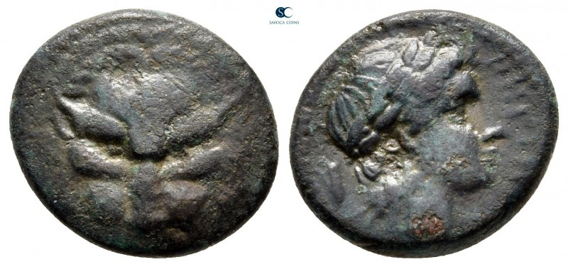 Bruttium. Rhegion circa 351-280 BC. 