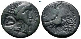 İskit.  Olbia AD 60-80.  Bronz Æ