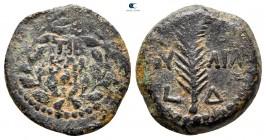 Judaea.  Kudüs.  Savcılar.  Valerius Gratus CE 15-26.  Tiberius'un RY 4'ü (17/8 CE).  Prutah Æ