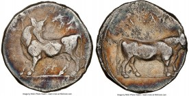 LUCANIA. Laus. Ca. 480-460 BC. AR stater (17mm, 7.69 gm, 9h). NGC VF 4/5 - 2/5. ΛAS, man-faced bull standing left, head reverted / ΛAS (retrograde), m...