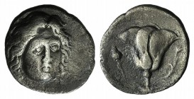 Islands off Ionia, Rhodes, c. 305-275 BC. AR Didrachm (20mm, 6.05g, 12h). Head of Helios facing slightly r. R/ Rose, bud to r.; to l., thyrsos above [...