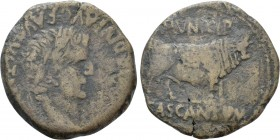 HISPANIA. Tarraconensis. Cascantum. Tiberius (14-37). As