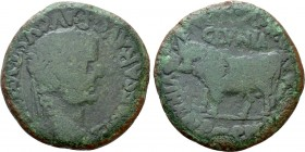 HISPANIA. Tarraconensis. Clunia. Tiberius (14-37). As. Cnaeus Pompeius, M. Avus, T. Antonius and M. Julius Seranus, quattorviri