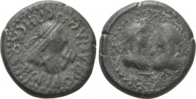 KINGS of BOSPORUS. Rhescuporis IV (Circa AD 242/3-276/7). BI Stater. Dated BE 560 (AD 263/4)