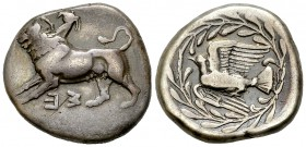 Sicyon AR Stater, ex BCD 