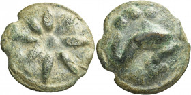 Greek Coins. Luceria. 