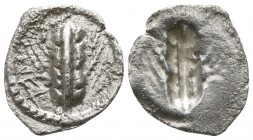 Lucania. Metapontion circa 540-510 BC. Obol AR