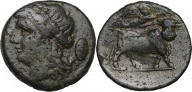Greek Italy. Samnium, Southern Latium and Northern Campania, Aesernia. AE 18 mm, 263-240 BC. Obv. Head of Apollo left, laureate; behind, oval shield. ...