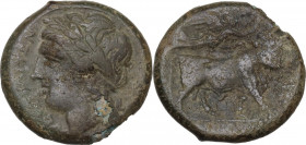 Greek Italy. Samnium, Southern Latium and Northern Campania, Cales. AE 19 mm, 265-240 BC. Obv. Head of Apollo left, laureate. Rev. Man-headed bull rig...