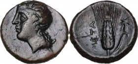 Greek Italy. Southern Lucania, Metapontum. AE, 275-250 BC. Obv. Head of Dionysos left, wearing ivy-wreath. Rev. Ear of barely; to right, cross-torch. ...