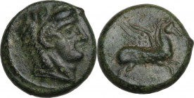 Sicily. Cephaloedium. AE 12.5 mm, C. 339/8-307 BC. Obv. Head of young Herakles right, wearing lion's skin. Rev. Pegasos flying right. CNS I 4; HGC 2 6...