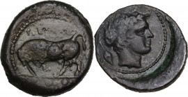 Sicily. Gela. AE Tetras or Trionkion, c. 420-405 BC. Obv. Bull standing left, head turned slightly right; three pellets in exergue. Rev. Horned head o...