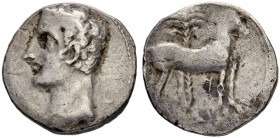 IBERIA. Carthago Nova. Shekel 221/206. Obv. Bare headed male head l. (Hannibal?). Rev. Horse standing r. before palm tree. Punic character 'zayin'. 5....