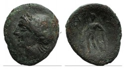 Sicily, Alaisa Archonidea, c. 208-186 BC. Æ (20mm, 3.49g, 12h). Laureate head of Apollo l. R/ Apollo standing l., holding laurel branch and leaning up...